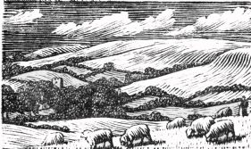 wood-engraving original print: The South Country